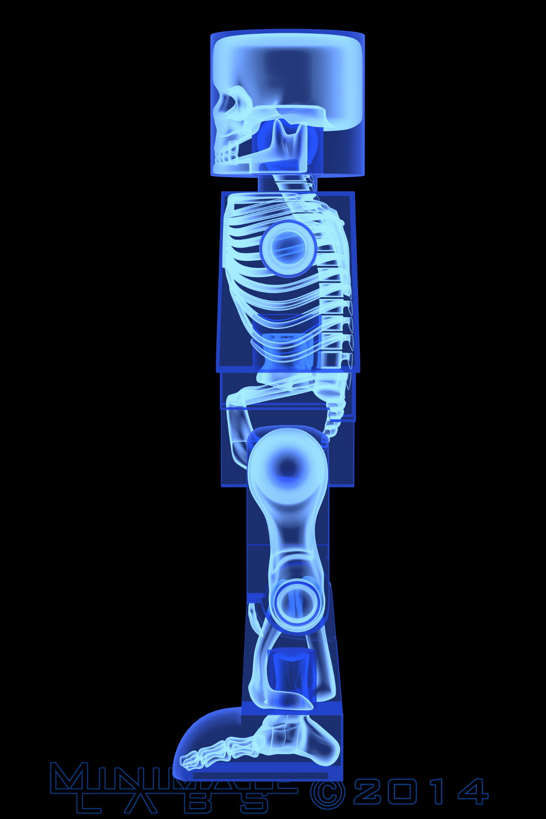 Lateral Blue X-Ray