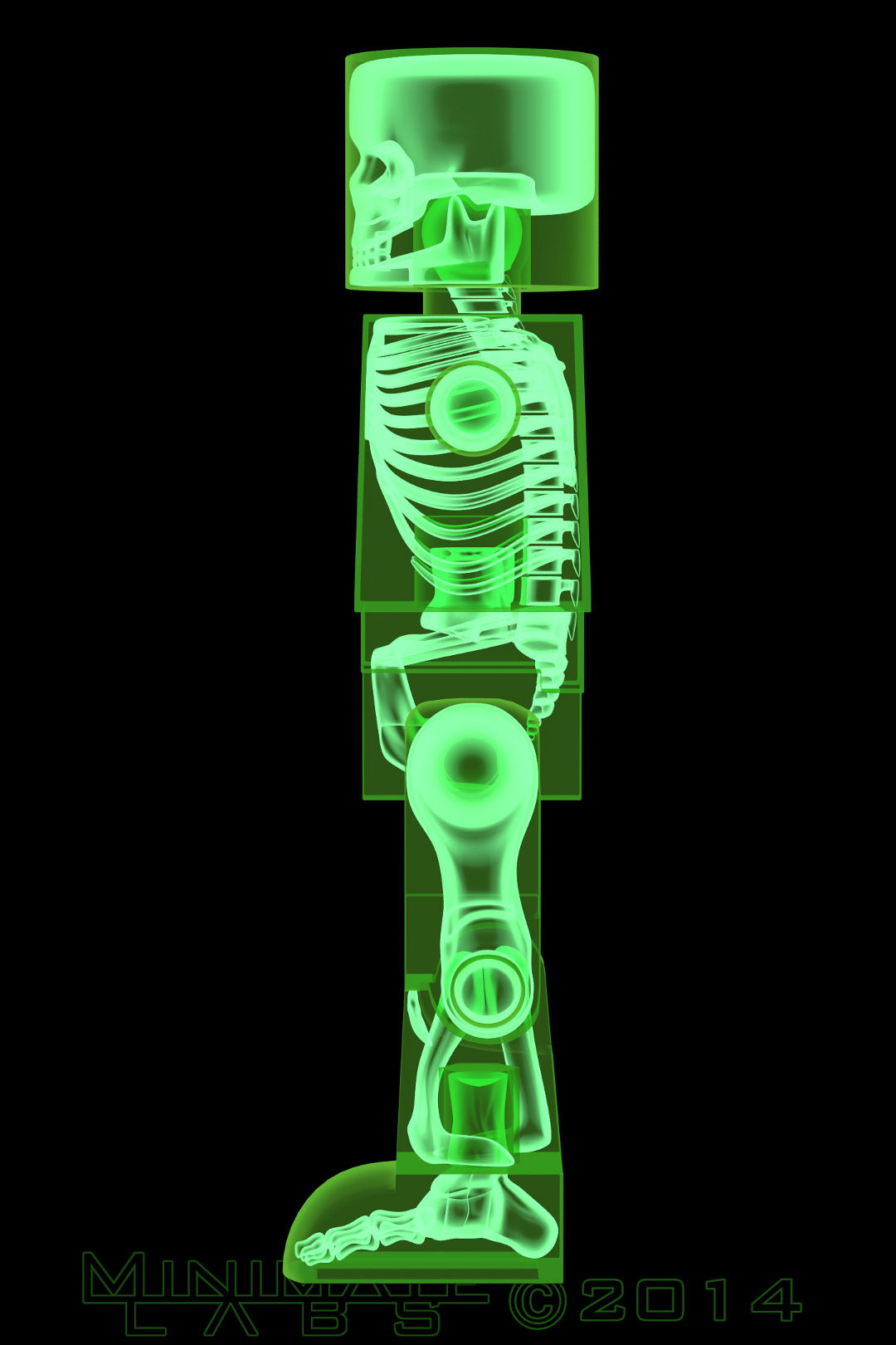 Lateral Green X-Ray