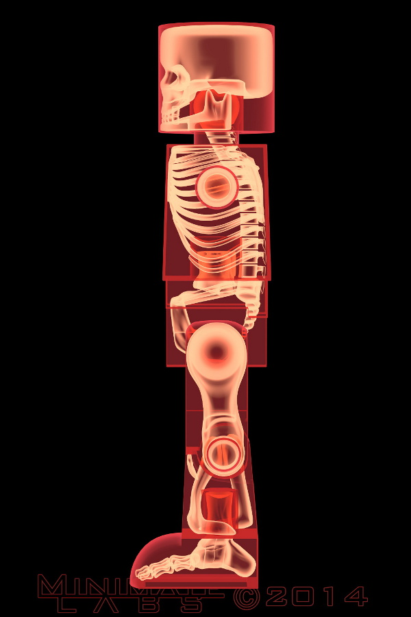 Lateral Red X-Ray